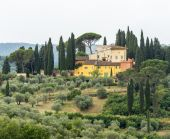 Landscape in Chianti (Florence, Tuscany, Italy)