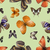 butterfly seamless 04