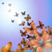 Summer background with colorful butterflies vector illustration clip-art
