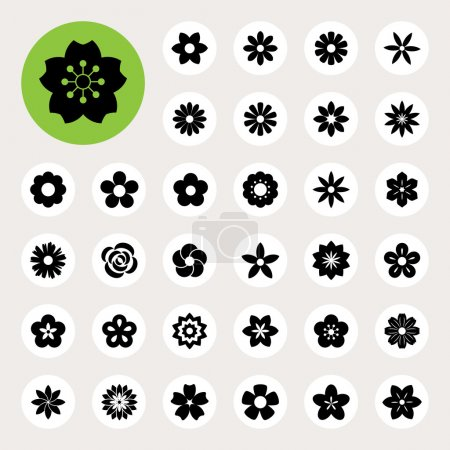 Set of Flower icons. Illustration eps10...