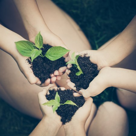 Photo for Children holding young plants in hands against spring green background. Ecology concept. Earth day - Royalty Free Image