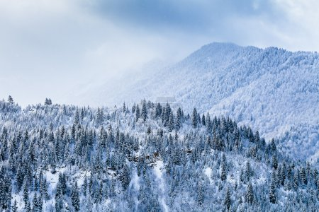 Snow covered slopes of Caucasus Mountains, winter landscape