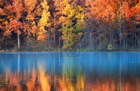Photo for Reflections of autumn trees in blue water lake - Royalty Free Image