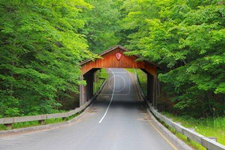 Covered bridge in Michigan
