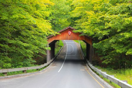 Covered bridge,Michigan