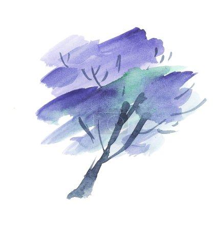 Photo pour Arbre Jacaranda peint fleurissent. aquarelle illustration dessinée à la main - image libre de droit