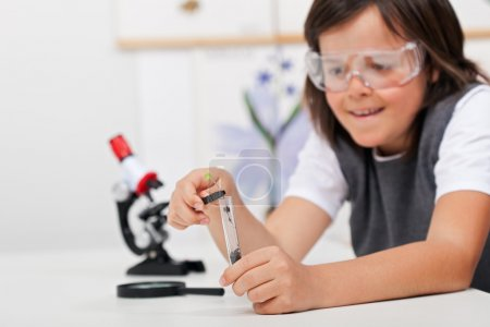 Young boy study plant in biology class