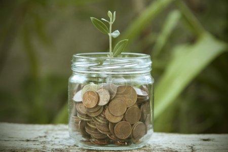 Photo pour Concept d'épargne, d'économie et de finance - image libre de droit
