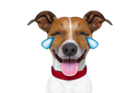 emoticon or Emoji dumb crying