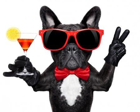 Photo pour Bouledogue français tenant verre à cocktail martini prêt à s'amuser et à faire la fête, isolé sur fond blanc - image libre de droit