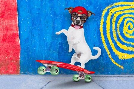 Photo pour Jack Russell skater chien avec chapeau rouge prêt à jouer, équilibrage sur skateboard rouge, derrière un mur avec des couleurs dans la rue à l'extérieur - image libre de droit
