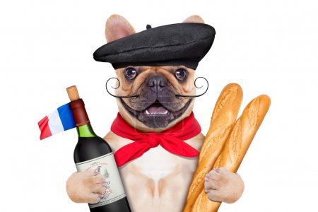 Photo for French bulldog with red wine and baguette and french  beret hat, isolated on white background - Royalty Free Image