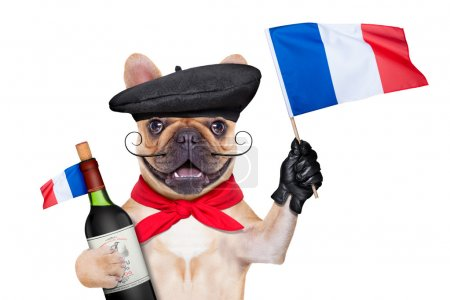 Photo for French bulldog with red wine and  beret hat, isolated on white background, waving a flag of france - Royalty Free Image