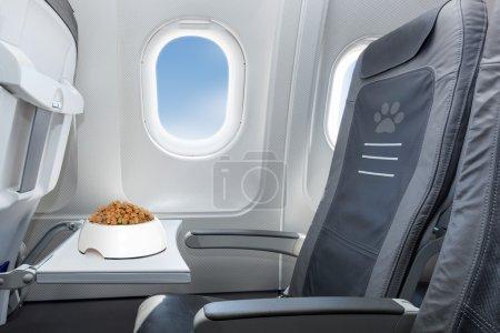 Photo pour Bol pour animaux de compagnie plein de nourriture à l'intérieur d'un siège de fenêtre d'avion où les animaux sont les bienvenus à bord - image libre de droit