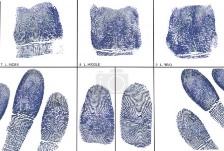 a Fingerprint card