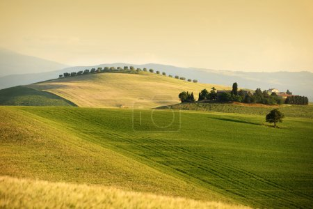 Tuscan Landscape. Val d'Orcia, Tuscany