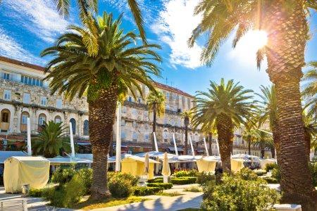 Photo pour Split passerelle principale au bord de l'eau palmiers et architecture, Dalmatie, Croatie - image libre de droit