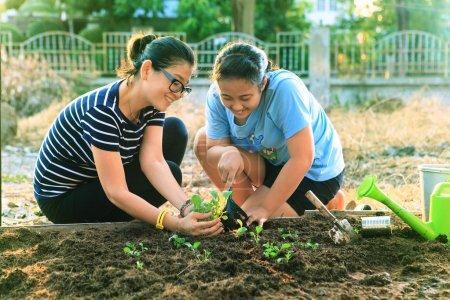 Photo pour Mère et jeune fille plantant des légumes dans le jardin à la maison utilisation du champ pour les personnes famille et mère célibataire activités de plein air détente - image libre de droit
