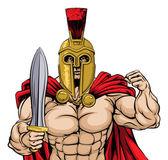 Roman Warrior Illustration