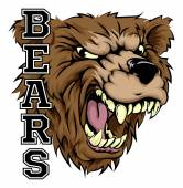 An illustration of a bear sports mascot head with the word bears