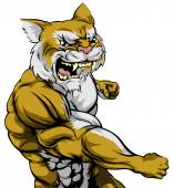 An illustration of a tough wildcat animal character or sports mascot punching