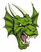 Dragon head illustration