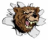 Bear breakthrough