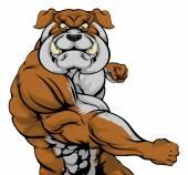 Bulldog mascot attacking