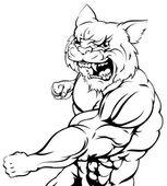 Wildcat mascot fighting