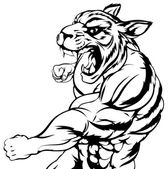 Tiger mascot fighting