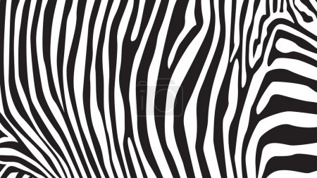 Illustration for Zebra stripes pattern, illustration background - Royalty Free Image