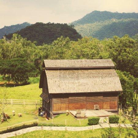 Almacén en la zona rural con granja de animales