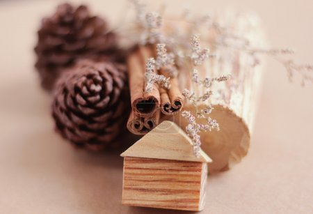 Wooden craft and pine cone