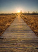 Prairie Boardwalk Sunset