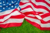 Americká vlajka na trávě