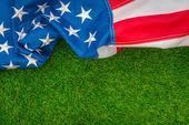 Americká vlajka na zelené trávě