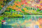 Podzimní Les, řeka