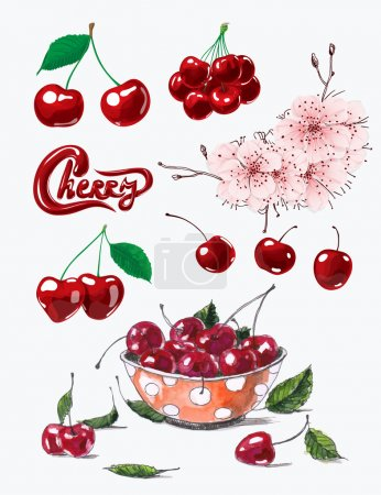 Illustration for Set of fresh ripe cherries, cherry blossom and bowl of cherries on white background. - Royalty Free Image