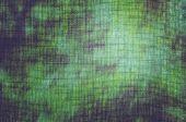 Obarvené textilie sunny forest