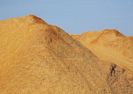Photo pour Pile de copeaux de bois, sciure contre un ciel bleu . - image libre de droit