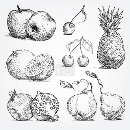 Hand drawing set of fruits, pineapple, orange, apple, cherry, pe