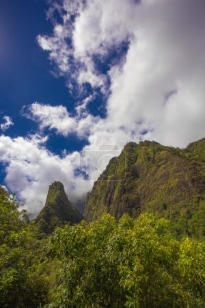 Iao Needle in Rain Forest