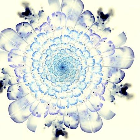 fraktal niebieski kwiat czerwony szczegóły na płatki, żółty