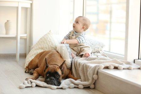 Photo pour Petit garçon avec chien boxeur reposant près de la fenêtre à la maison - image libre de droit