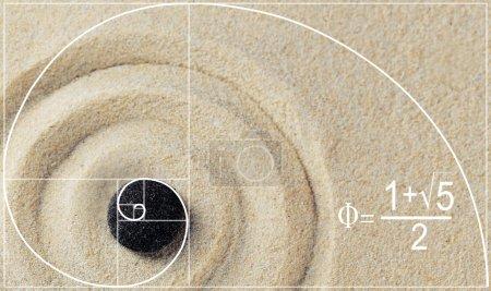 Illustration of golden ratio in nature.