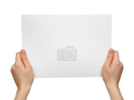 Female hands holding blank sheet
