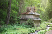 Dřevěný dům na okraji lesa