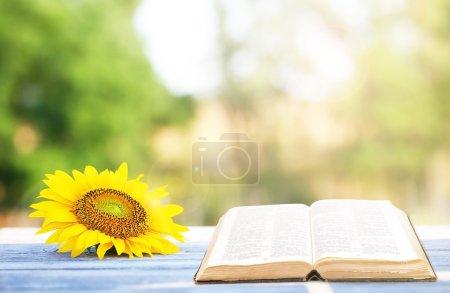 Photo pour Livre ouvert sur table à l'extérieur - image libre de droit