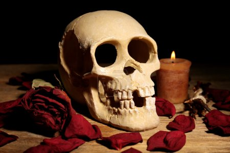 Photo for Human skull with dried rose petals and candle on wooden table, close-up - Royalty Free Image