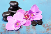 Květy orchidejí a wellness kameny